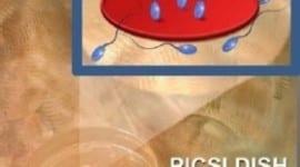 Νέες τεχνικές εξωσωματικής, PICSI (physiological ICSI)