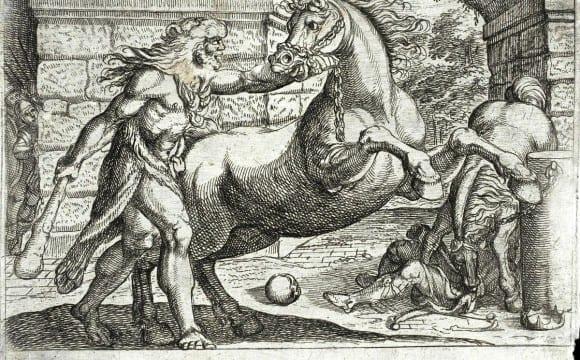 Η ρομά ως ταύρος μαινόμενος εν ταχυδρομείω