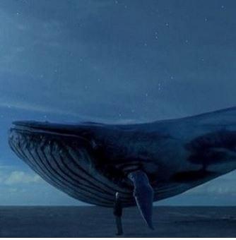 «Μπλε Φάλαινα»: 10 συμβουλές για να προλάβουν οι γονείς το κακό
