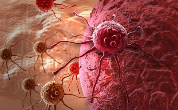 Επαναστατική έρευνα: Ο καρκίνος θα μπορεί να θεραπεύεται σε μια δεκαετία